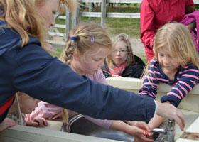 News - Hatfield Park Farm